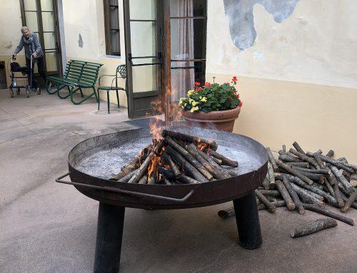 Quisisana Modigliana: Festa di San Martino 2019